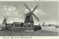024 Watermolen Zwarte Kalf