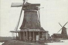 048 De Os en De Windhond Kalverringdijk