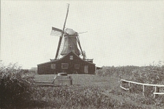 049 Westzaan De Veldkat